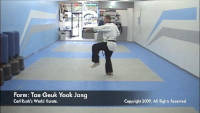 thumbnail of Taegeuk Yook Jang demonstration video